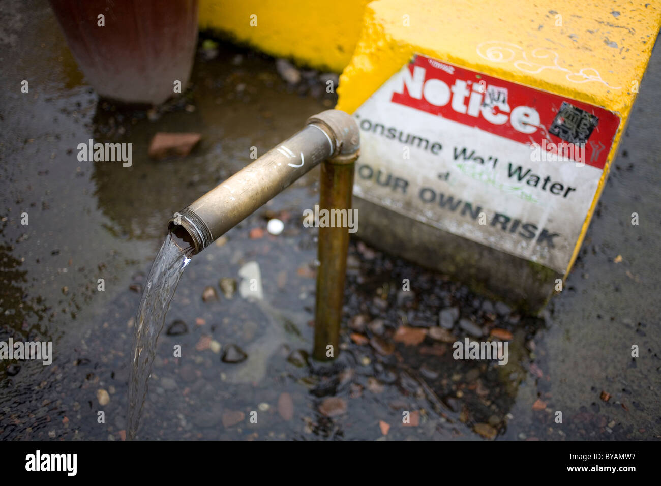 Public artesian well in Olympia Washington flowing from a pipe - Stock Image
