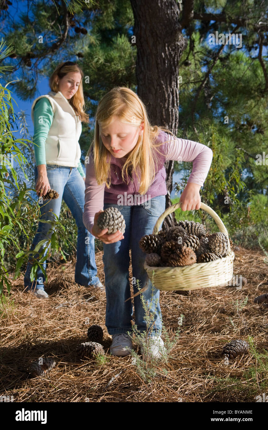 Mother and daughter collecting pinecones - Stock Image