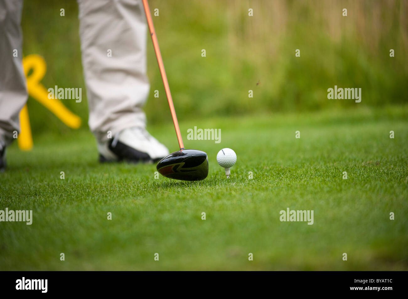 Golfer using a driver, just before hitting the ball - Stock Image
