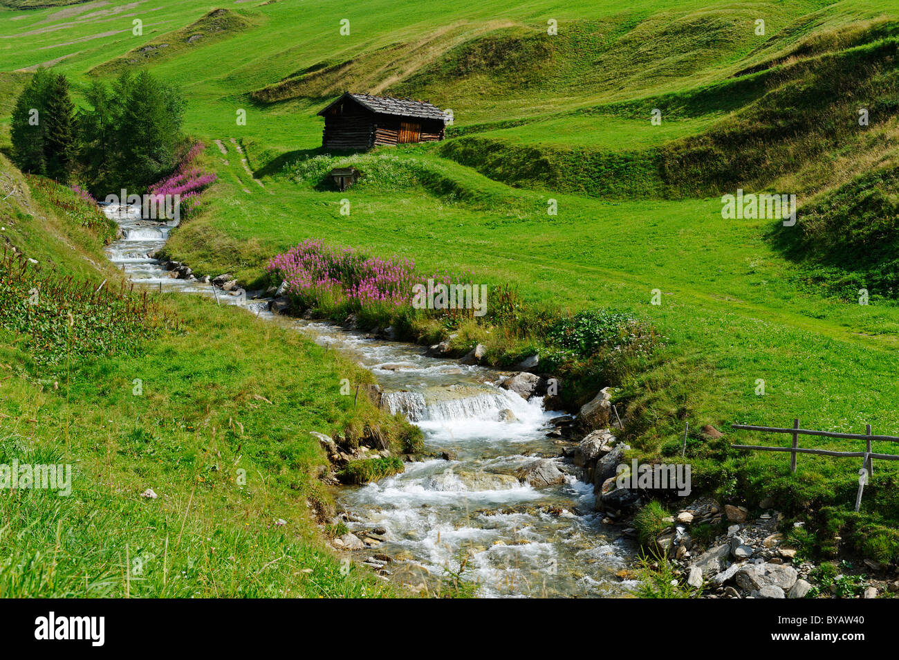 Fanealm, Fane Alm, with Valser Bach stream, Vals Valley, Puster Valley, Pfunderer Mountains, Alto Adige, Italy, Europe Stock Photo