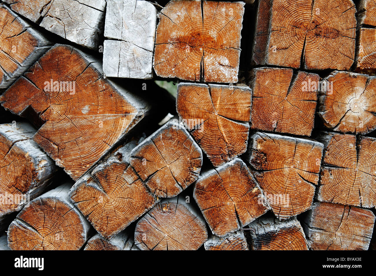 Old wooden beams, old fire wood - Stock Image