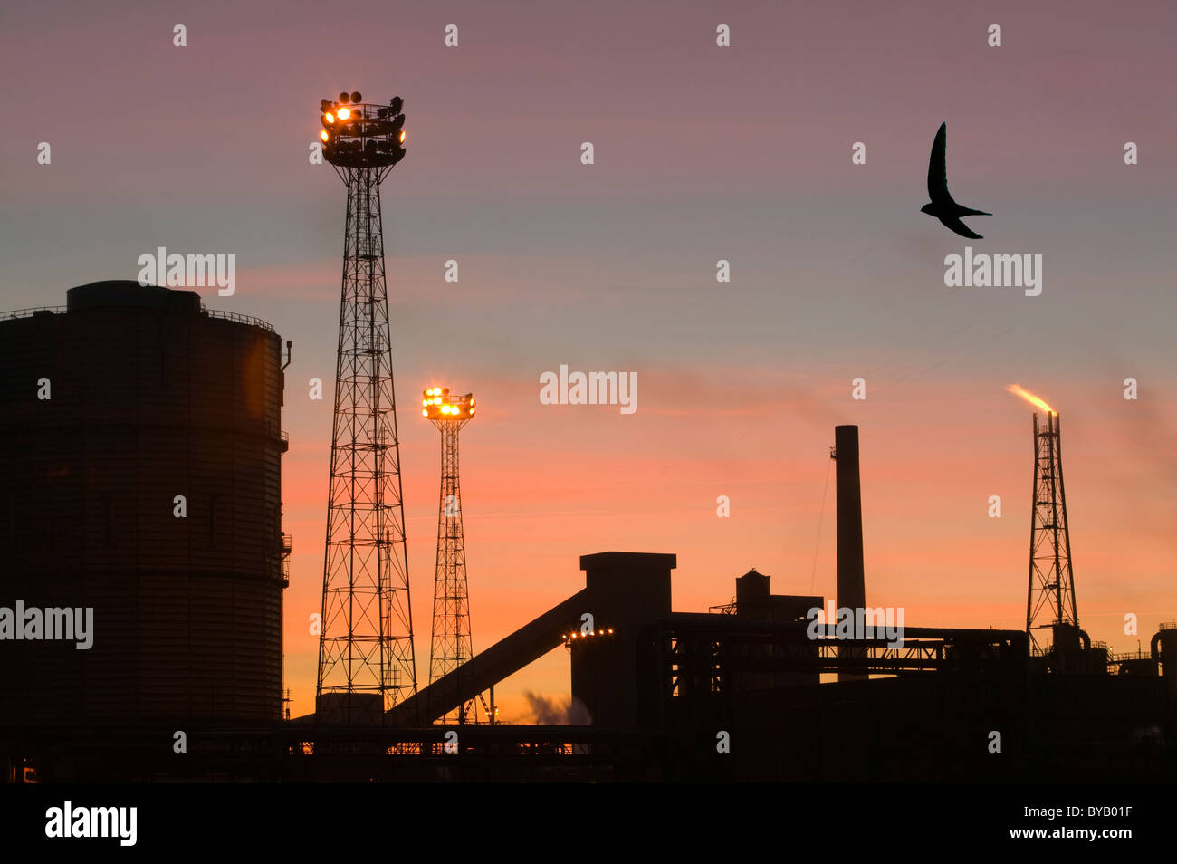 Emmissions from the Corus steelworks at Redcar UK, with a Swift flying past. - Stock Image