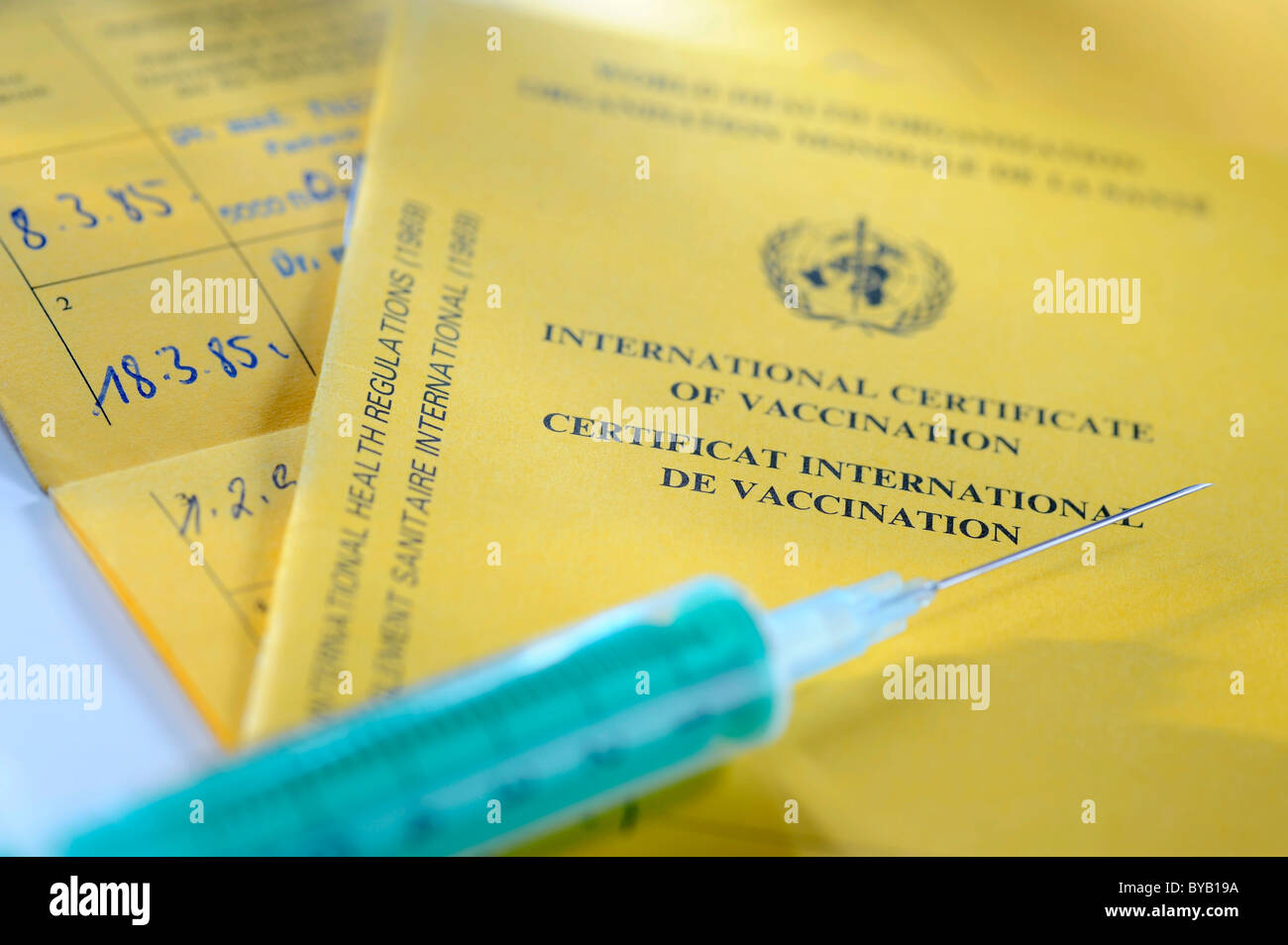 Vaccination record, international certificate of vaccination, syringe - Stock Image