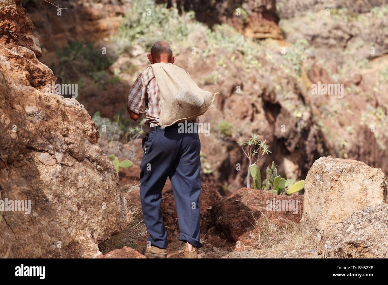 Local man carrying a sack on his back, Barranco de Guarimiar near Alajeró, La Gomera, Canary Islands, Spain, - Stock Image