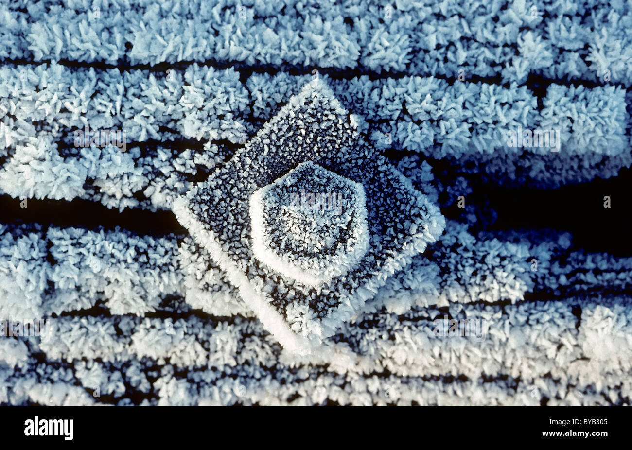 Thick bolt with a washer screwed into a wooden beam, covered in hoar frost, industrial ruin - Stock Image