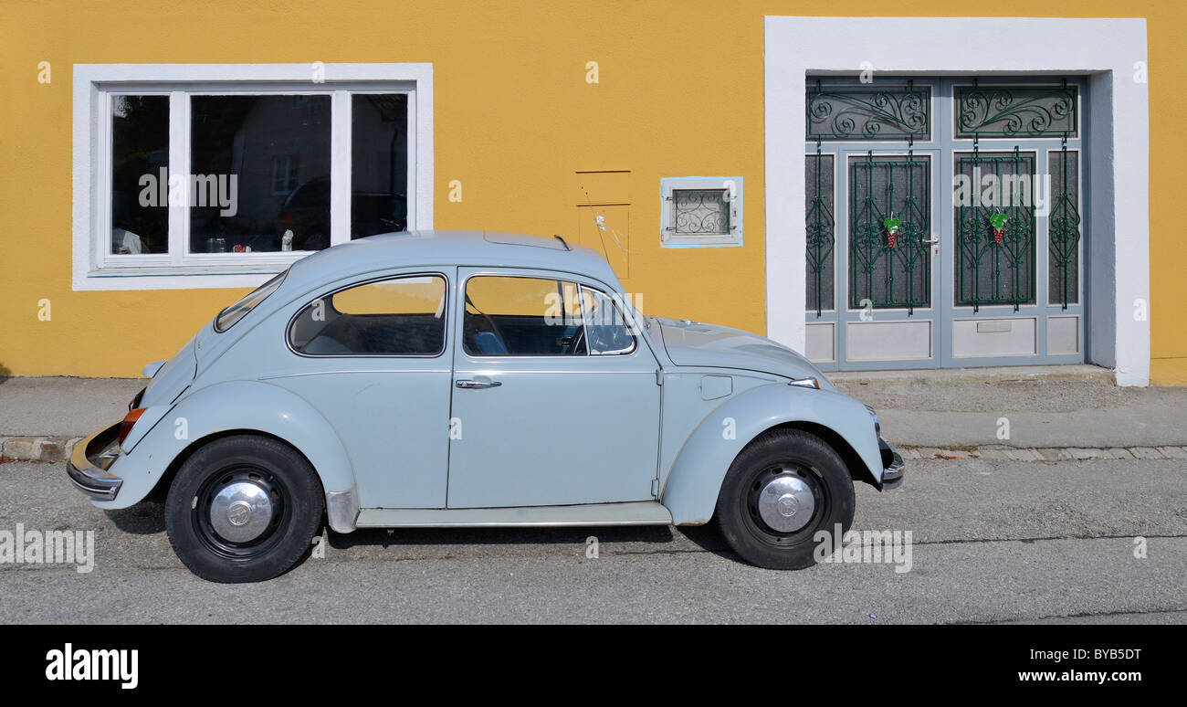 Old VW Beetle, Triestingtal, Lower Austria, Austria, Europe - Stock Image