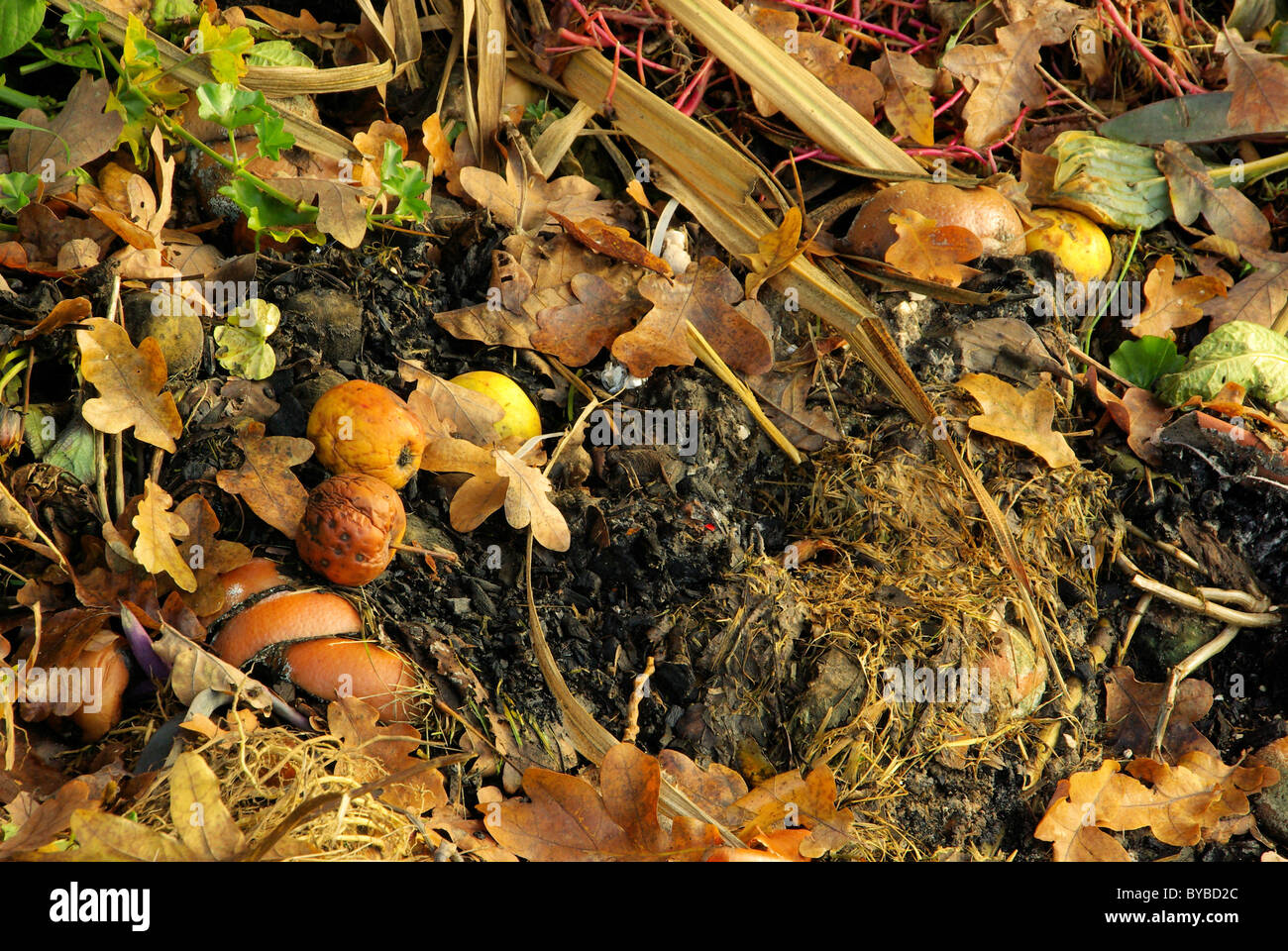 Komposthaufen - compost pile 11 - Stock Image