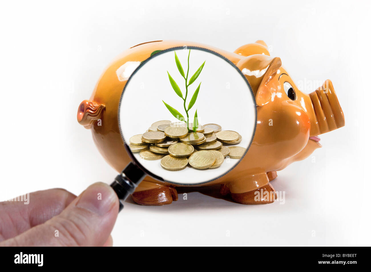 Symbolic image for slowly growing savings - Stock Image