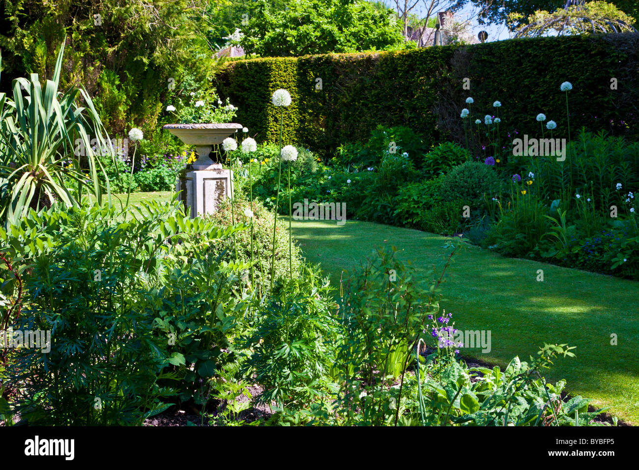 A Small Lawn In An English Country Garden In Summer With A Stone Planter On  A