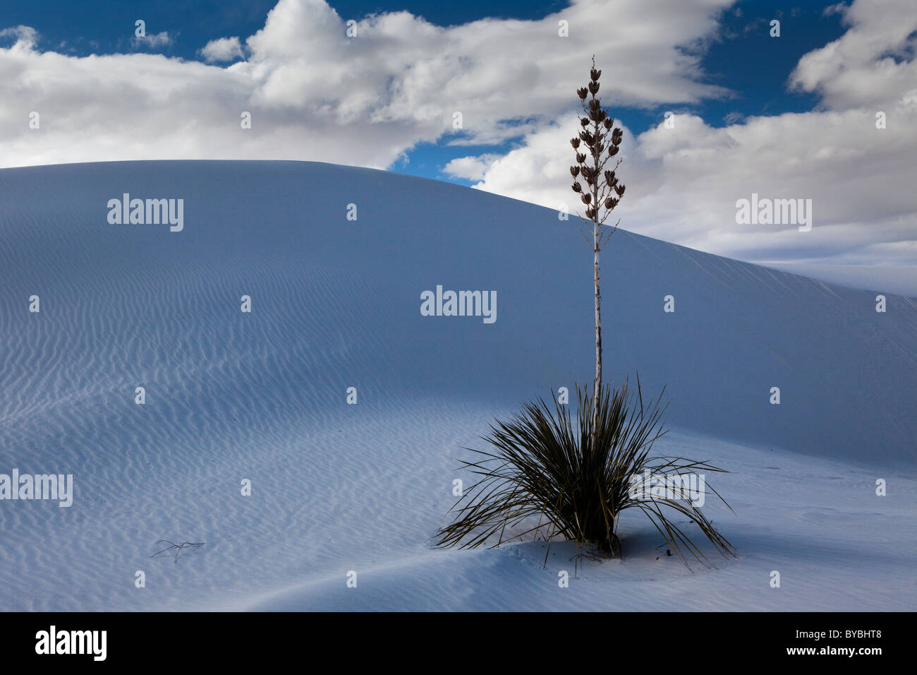 White Gypsum sand dunes in a desert with mountains, White Sands National Monument, New Mexico, USA - Stock Image