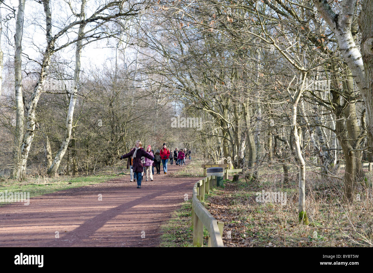 French schoolchildren explore Sherwood Forest in winter Stock Photo