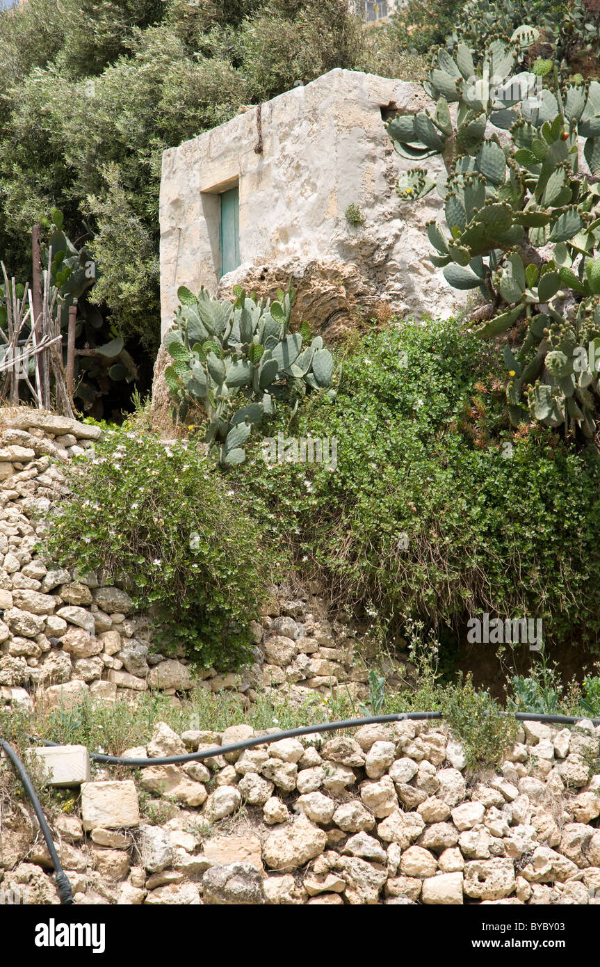 Gozo Malta Agricultural building  local people use to store tools and crops built from local stone and found around - Stock Image