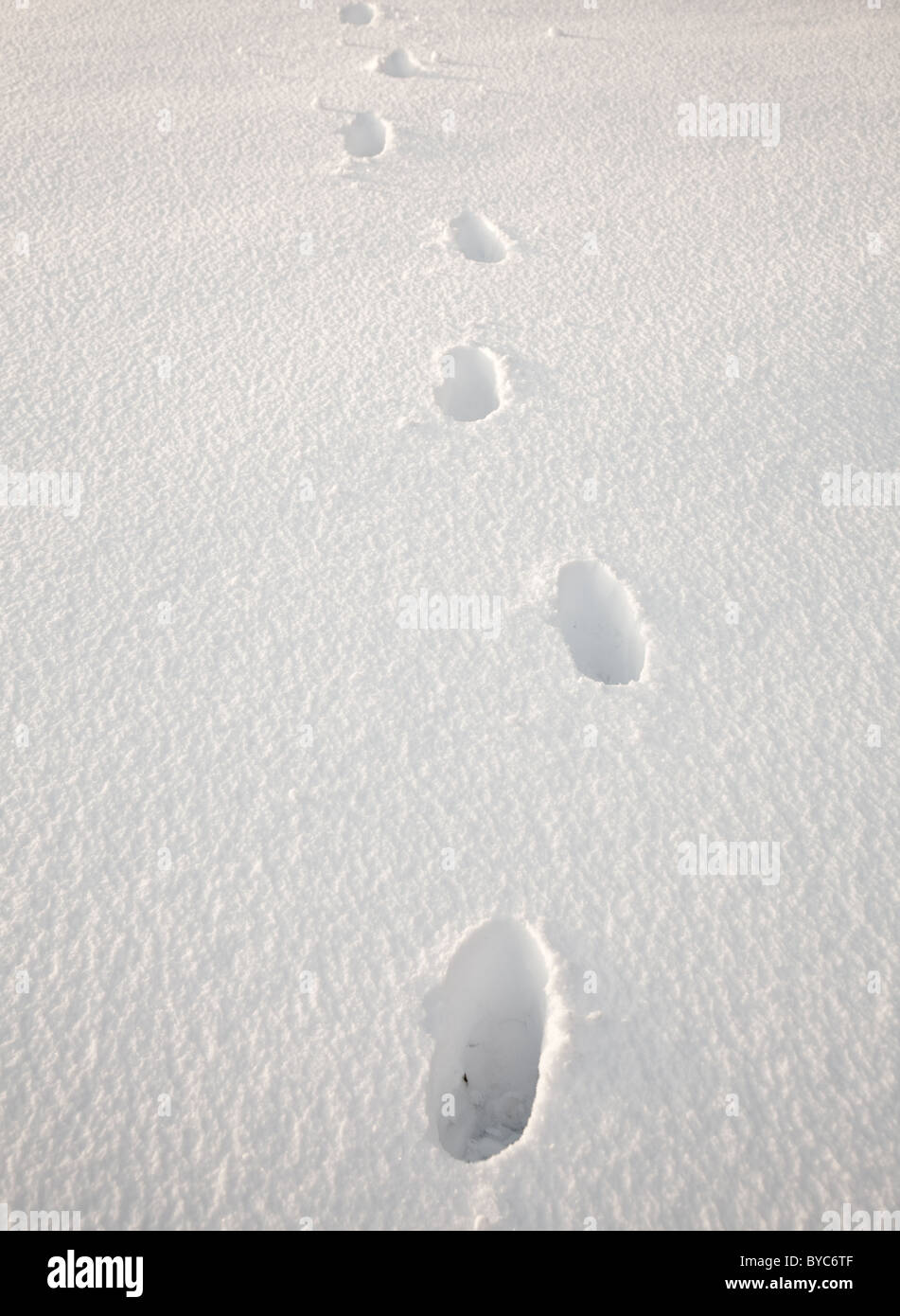 Set of footsteps disappearing into the distance in deep sidelit snow Stock Photo