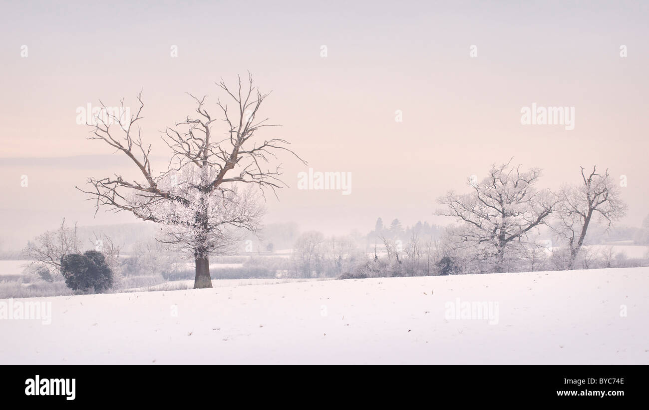 A winter scene in taken on a Decembers day in Elmore, Gloucestershire, England UK - Stock Image