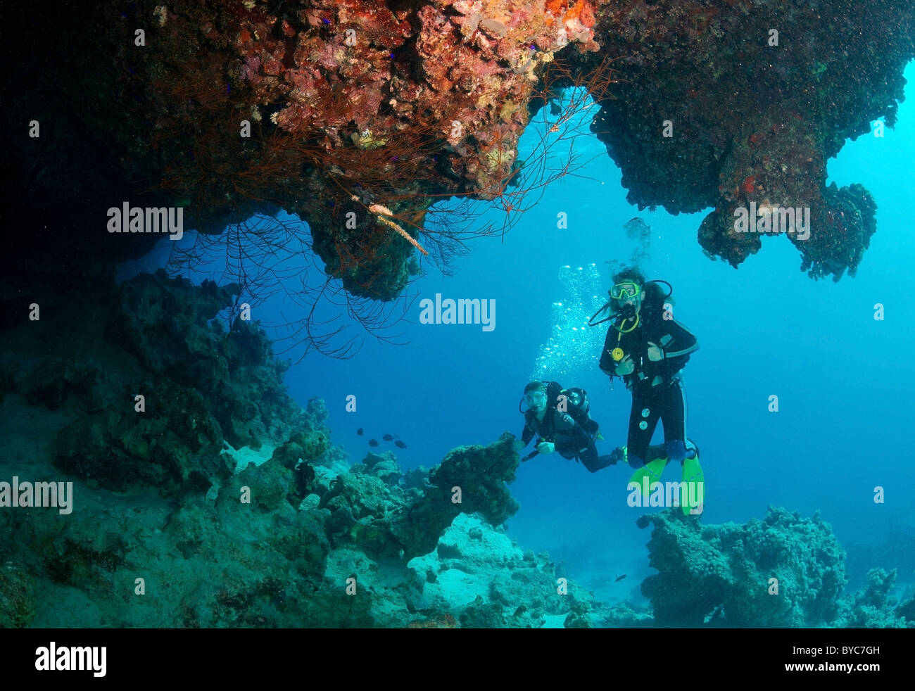 Pair scuba divers look at on coral cave Stock Photo