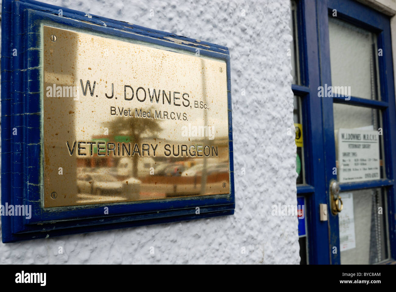 Name plaque outside a veterinary surgery, Aberystwyth, Wales - Stock Image