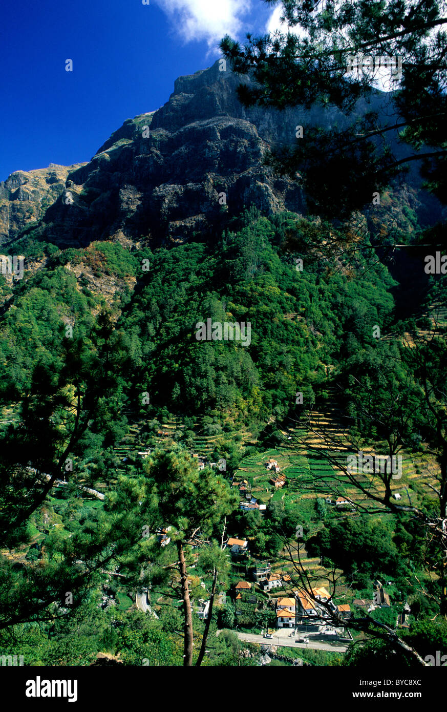 The rugged, mountainous and verdant interior of Madeira, a Portuguese island of volcanic origin situated in the - Stock Image
