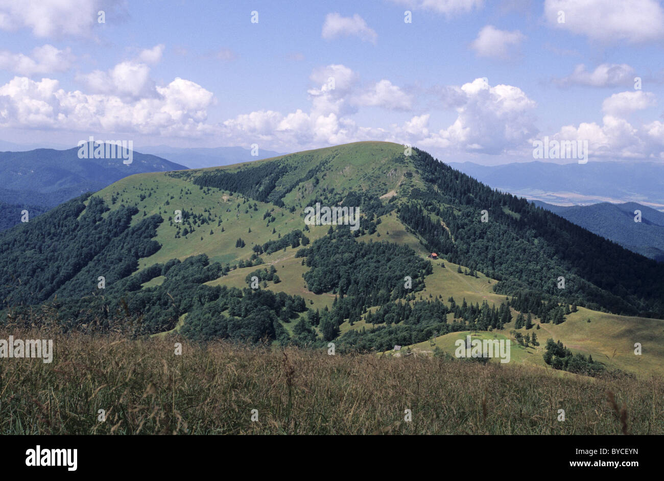 View of the Borisov hill, popular tourist destination at the center of Velka Fatra mountains, Slovakia. - Stock Image