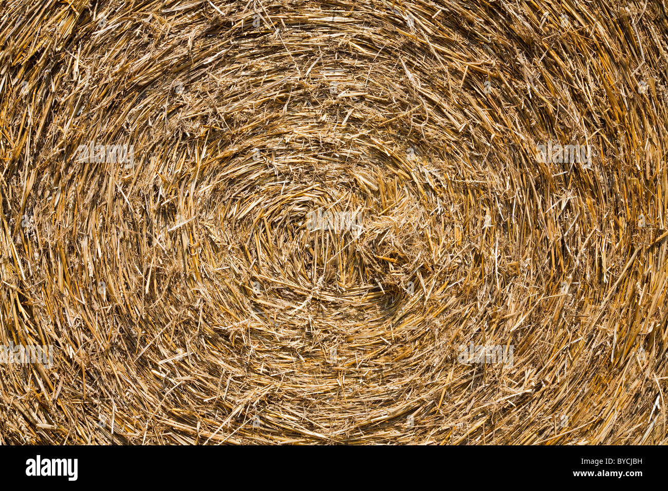 bale of the straw - background - Stock Image
