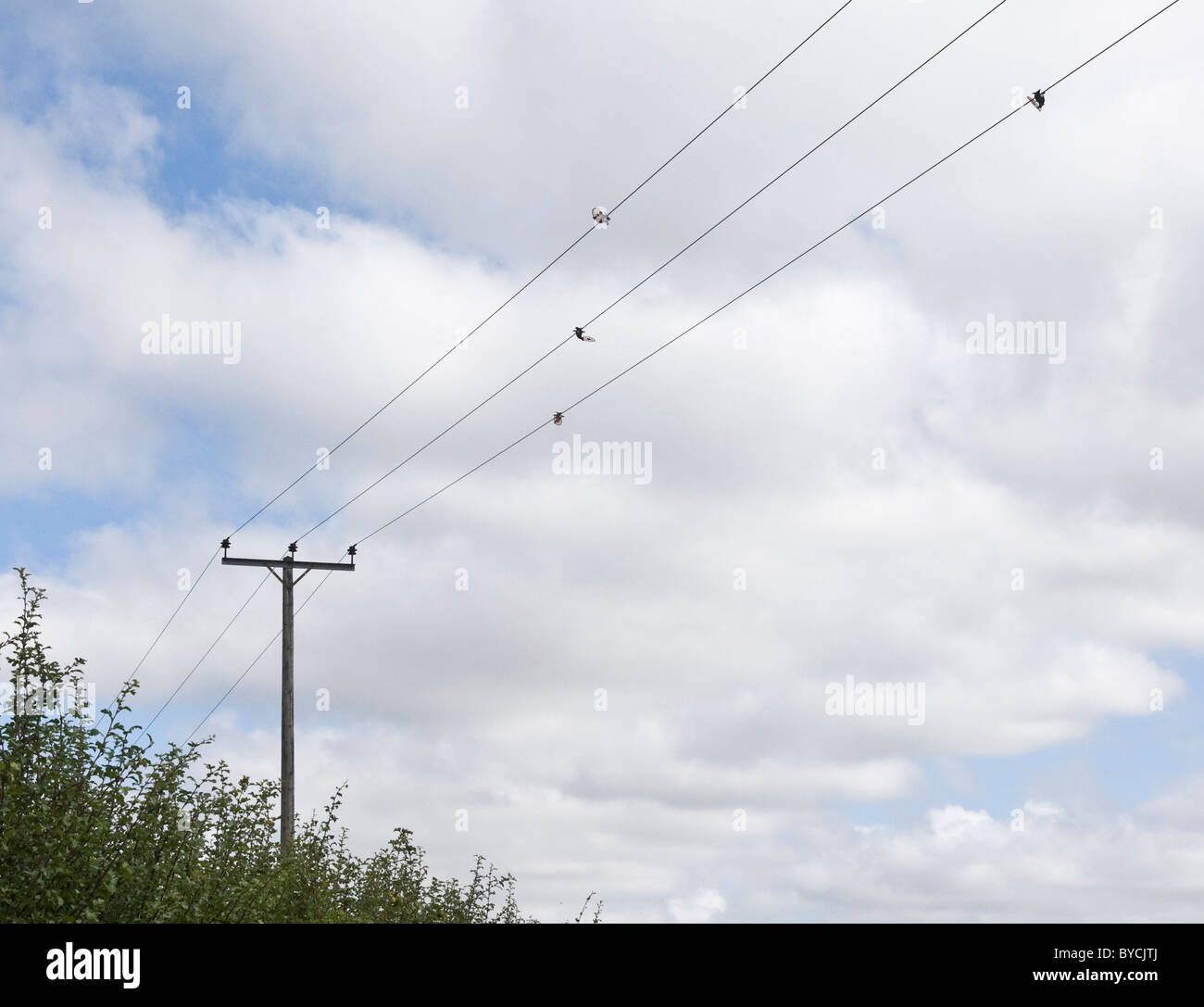 Overhead electricity cables with bird flight diverters attached to prevent water bird flying into the cables. (Grantham - Stock Image