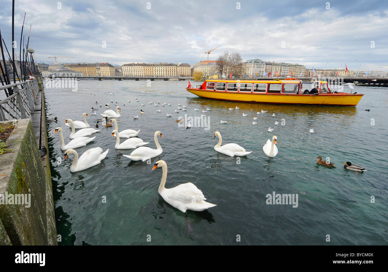 The city of Geneva waterfront on Lake Geneva Switzerland. - Stock Image