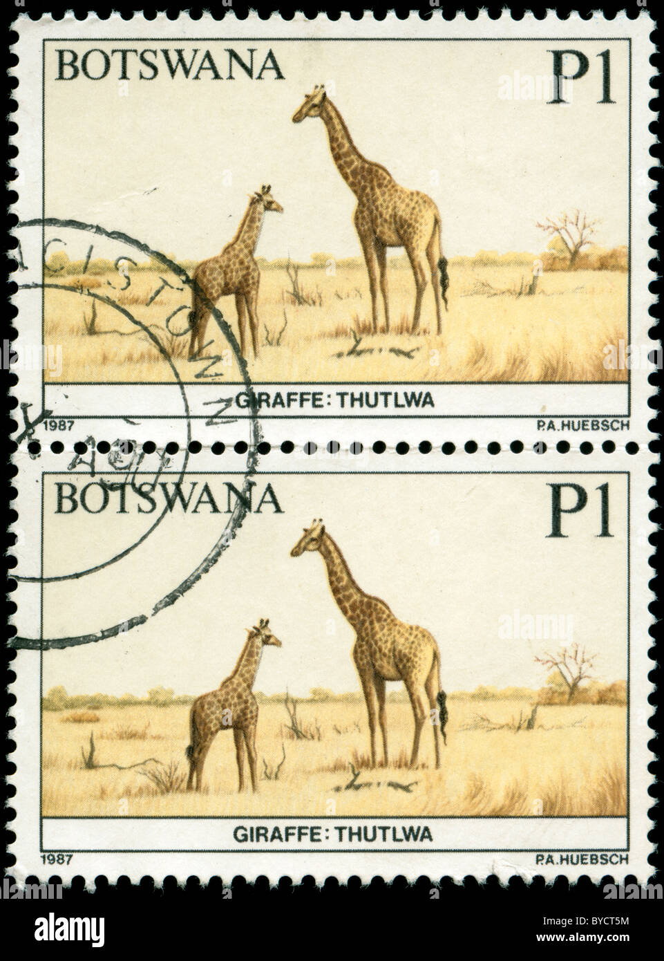 Sheet of two stamps from Botswana with picture of giraffes Stock Photo