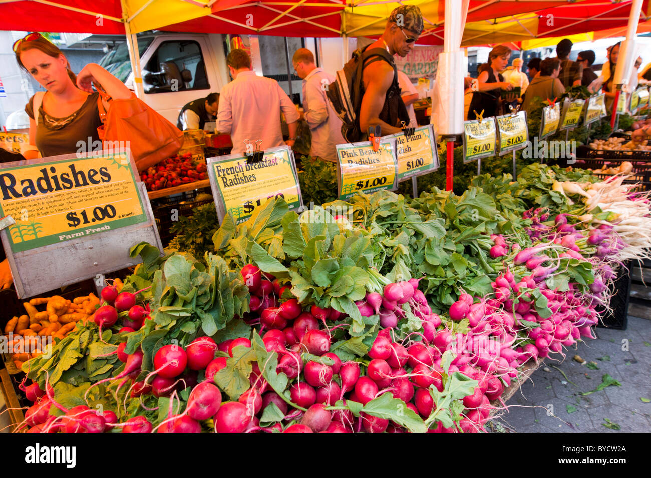 Fruit and vegetable market at the Greenmarket in Union Square, New York City, USA - Stock Image