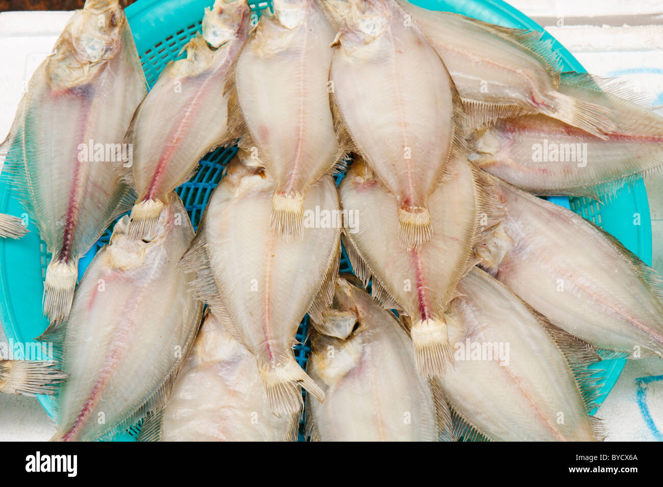Flatfish for sale - Stock Image