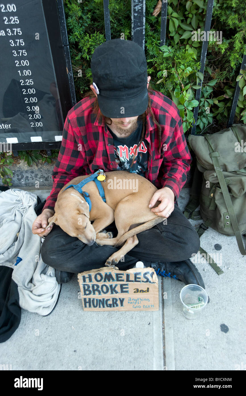 Young homeless man with dog begging on the street, New York City, USA - Stock Image