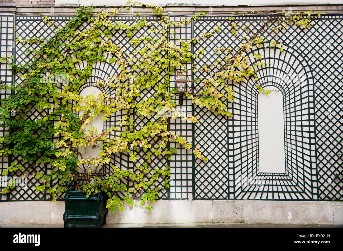 Wall with rack for plants in 9th arrondissement in Paris - Stock Image