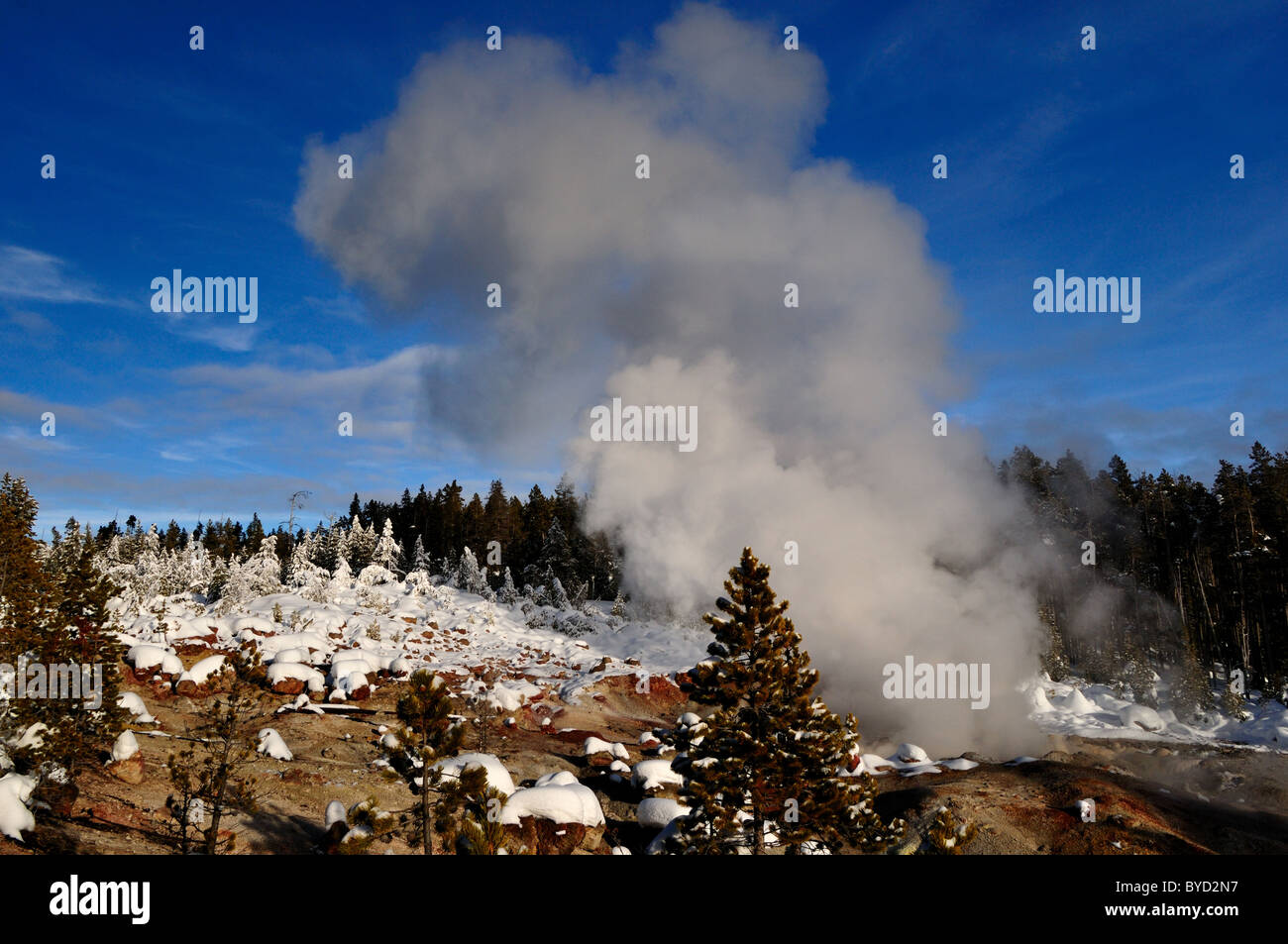 Steam rising from the Steamboat Geyser. Yellowstone National Park, Wyoming, USA. - Stock Image