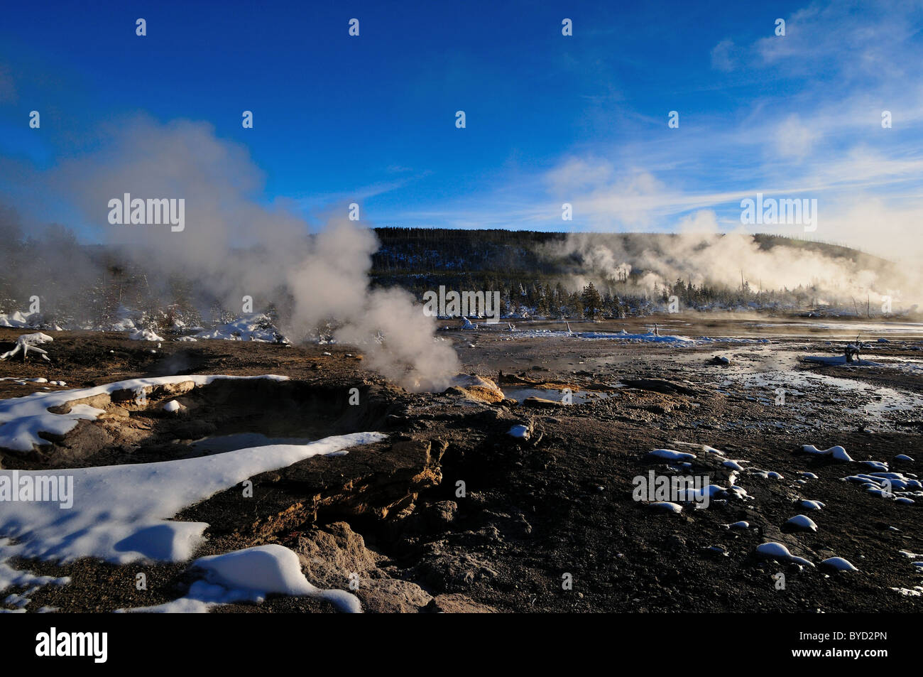 Steam vents at the Norris Geyser Basin. Yellowstone National Park, Wyoming, USA. - Stock Image