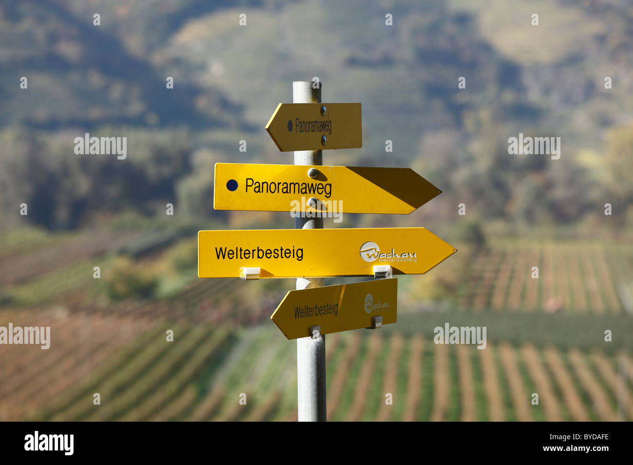 Signpost, hiking trails, 'Panoramaweg', German for 'panoramic path' and Welterbesteig trail, Rossatz, - Stock Image