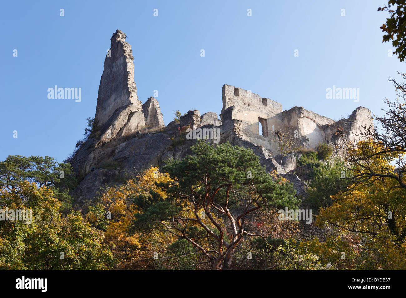 Burgruine Duernstein castle ruins, Wachau, Waldviertel, Niederoesterreich, Oesterreich, Europa - Stock Image