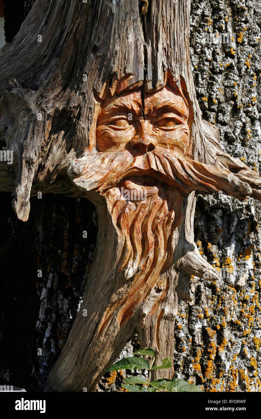 Carved tree stump, Oberammergau, Bavaria, Germany, Europe - Stock Image