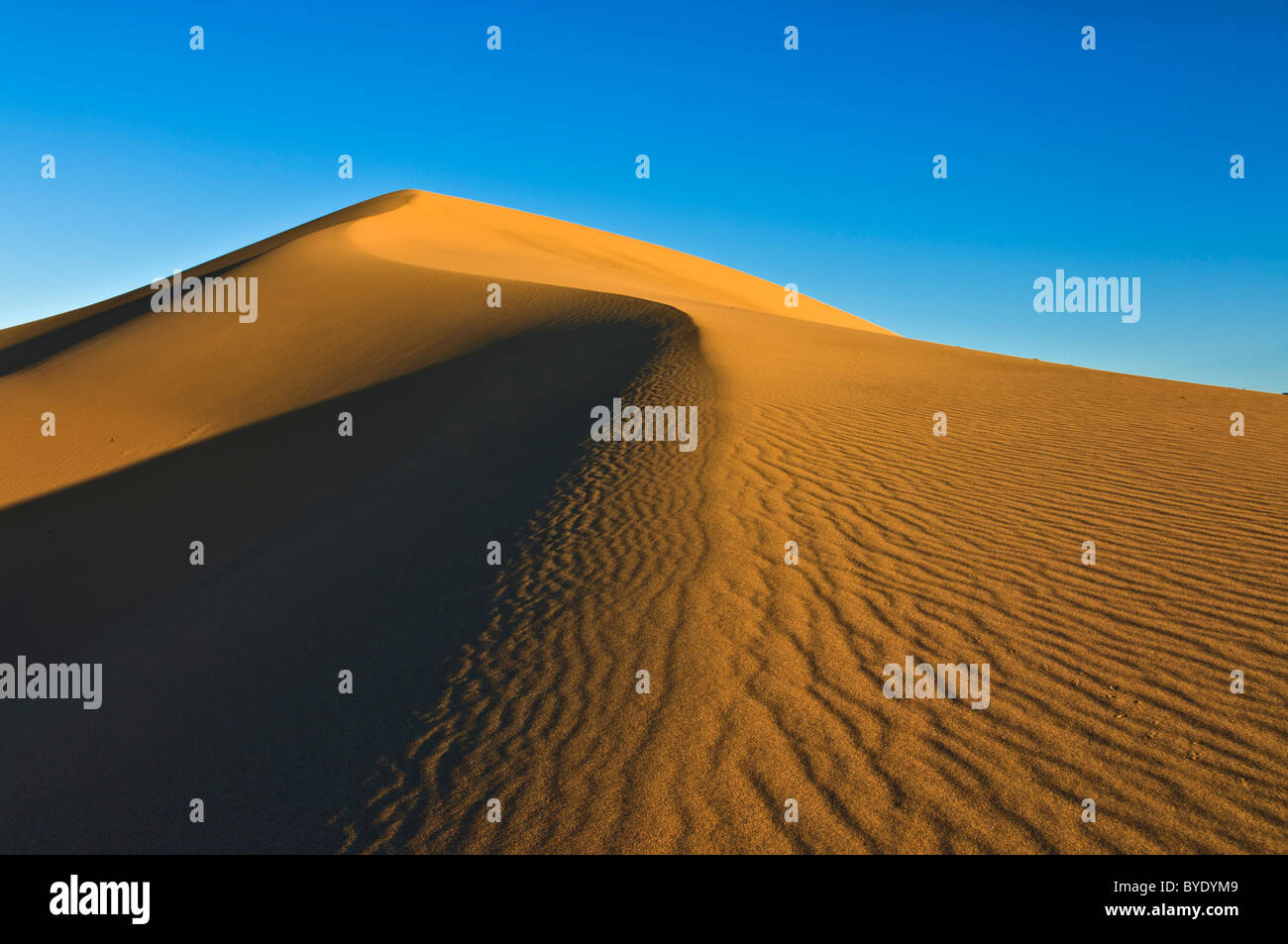 Sand ripples in the dunes of the Mesquite Flats sand dunes, Stovepipe Wells, Death Valley National Park, California, - Stock Image