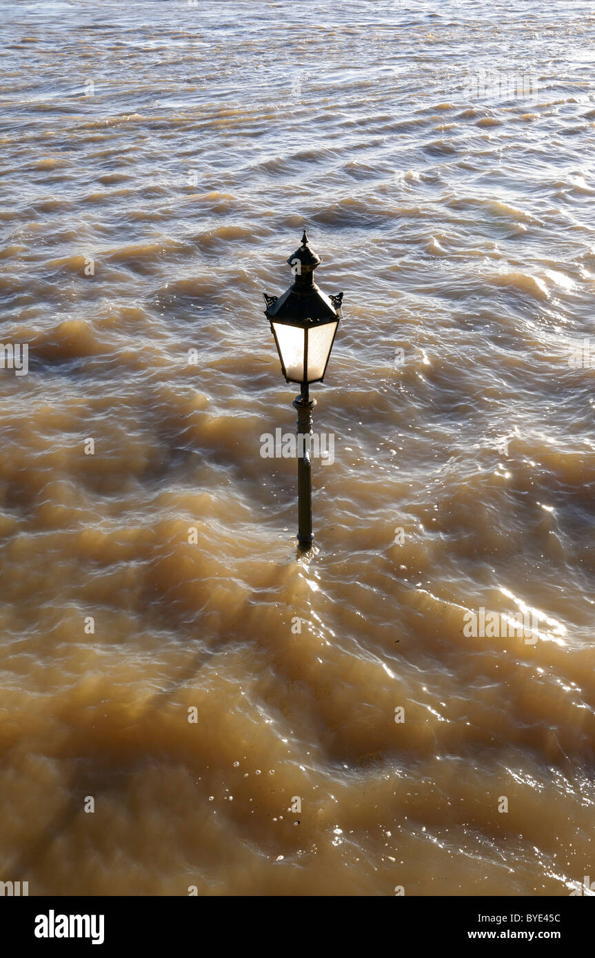 High water on the Lower Rhine at Rees, Germany. - Stock Image