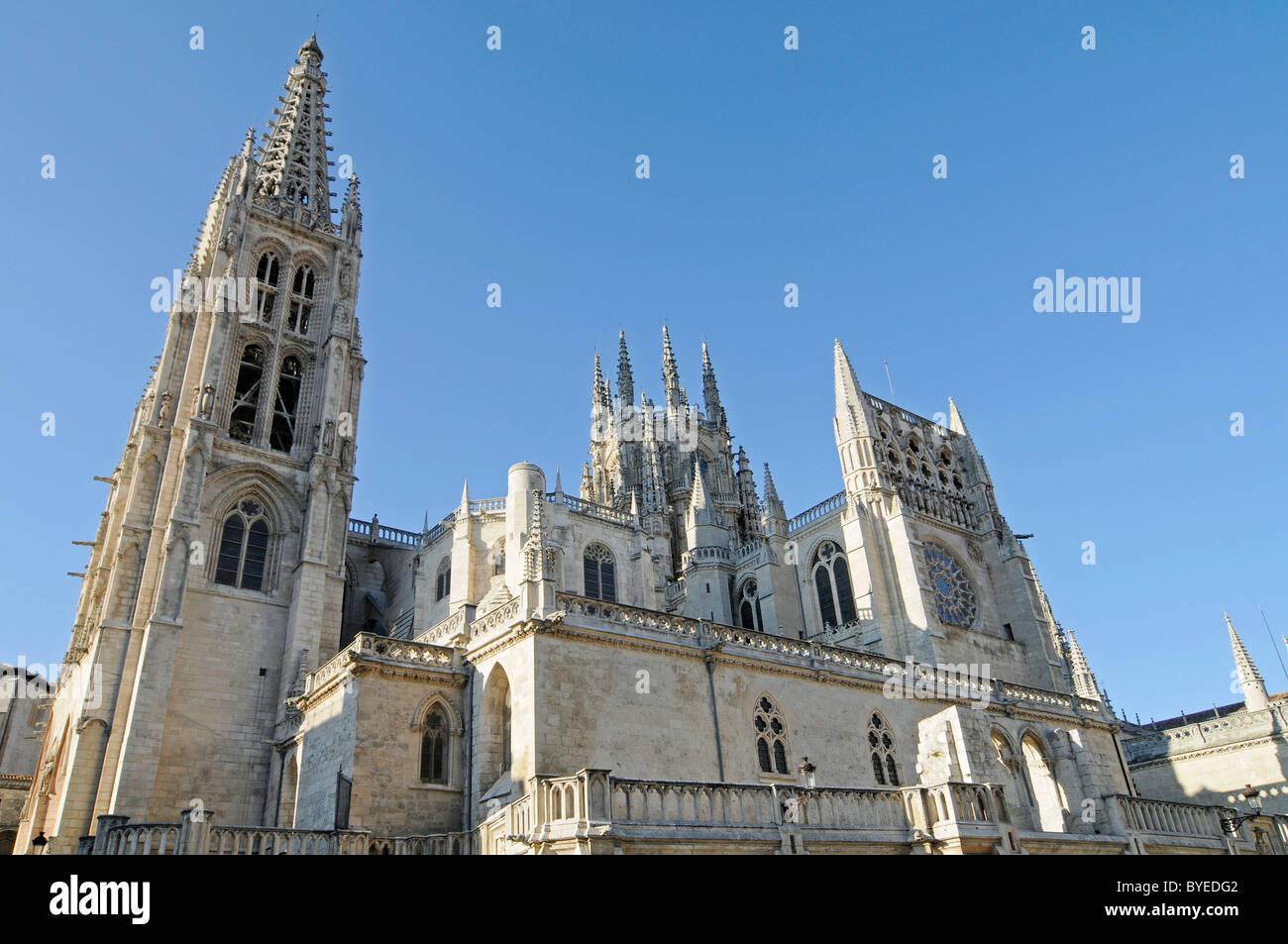 Gothic Cathedral of Burgos, Burgos, Castilla y Leon province, Spain, Europe - Stock Image