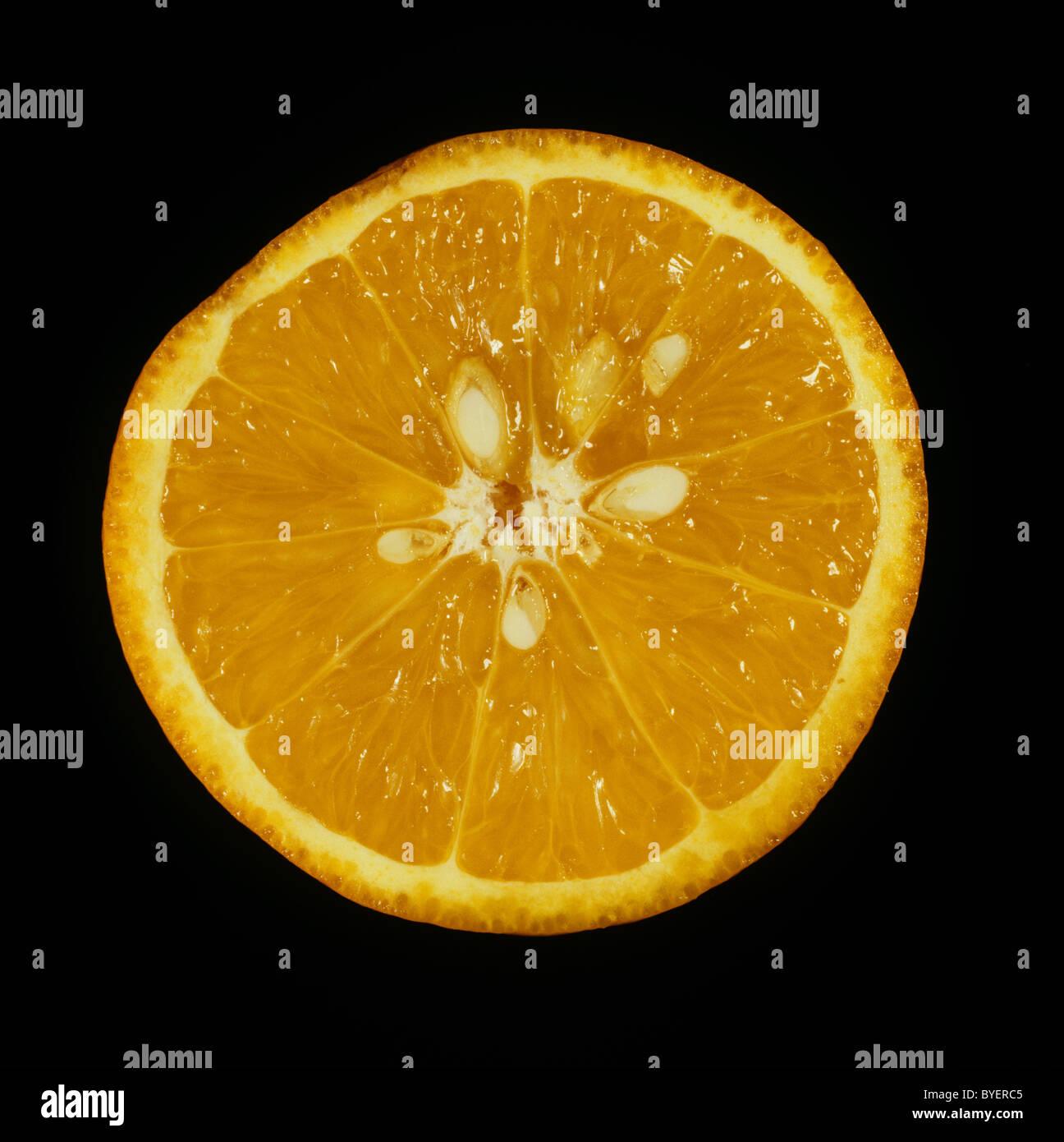 Cut section of citrus fruit orange variety Succari - Stock Image