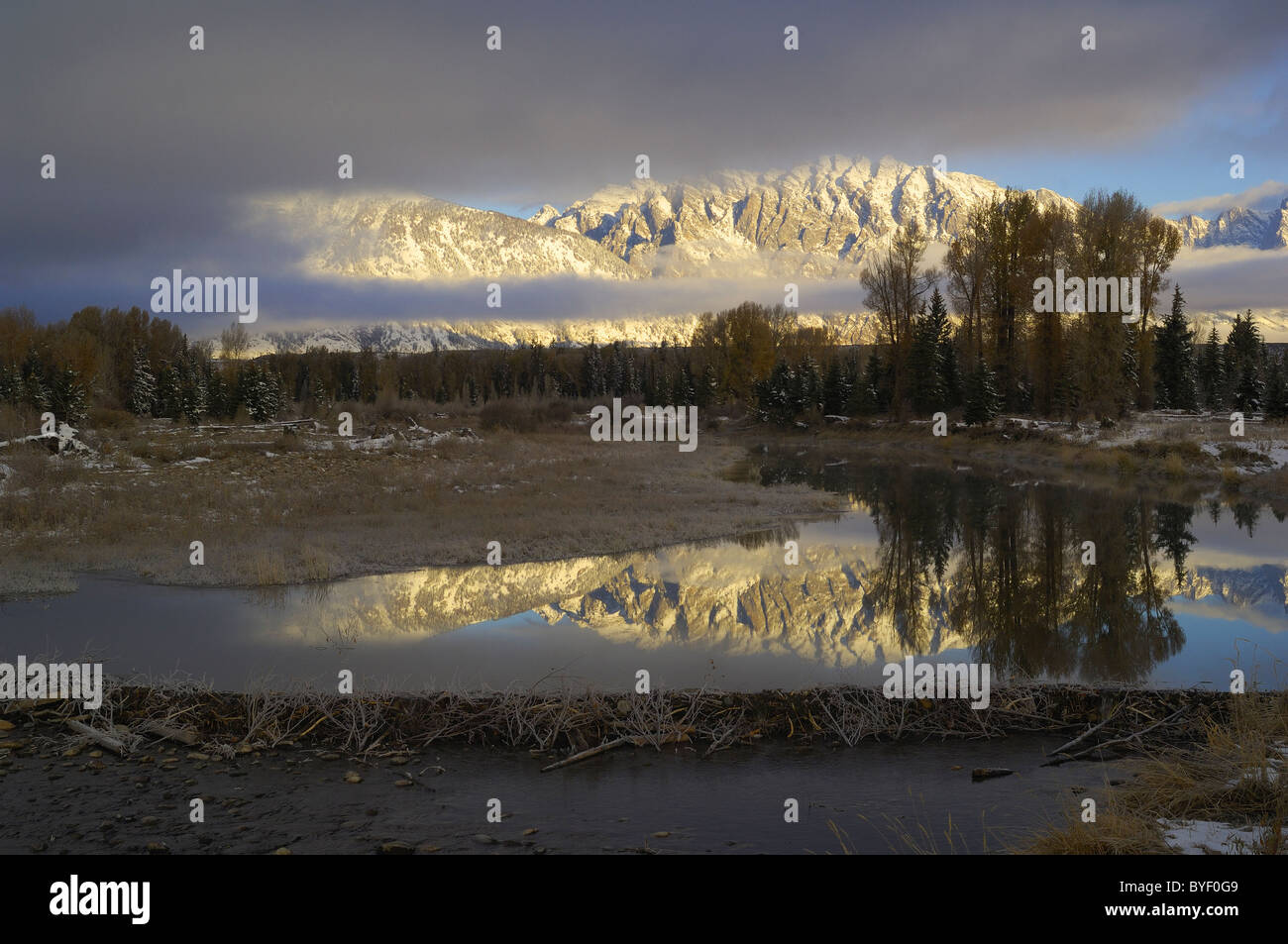 Grand Tetons reflected in beaver pond. Stock Photo