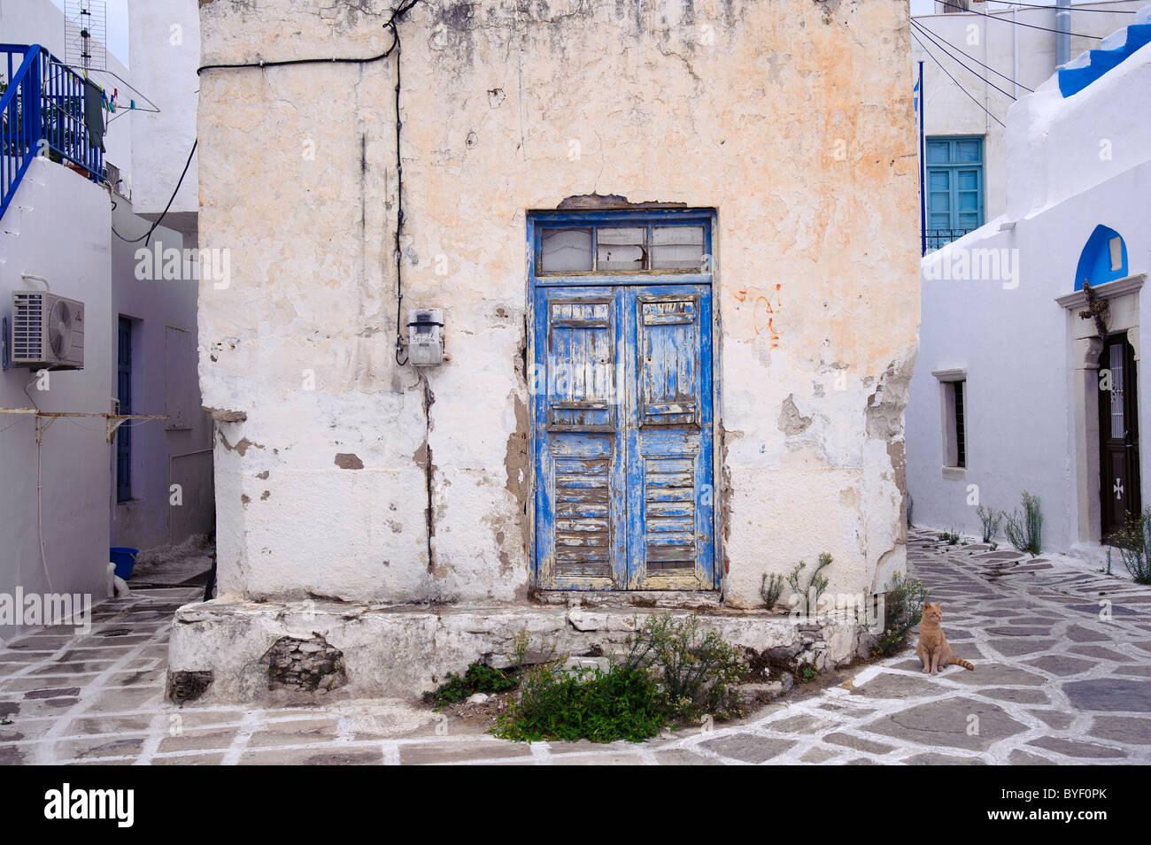 Ginger cat standing close to an old decrepit house in the town of Parikia, on the Greek Cyclade island of Paros. - Stock Image