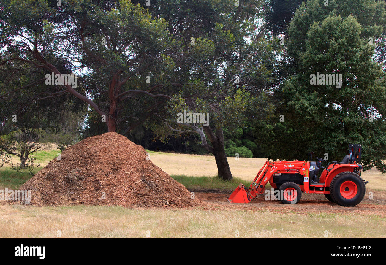 Compact Kubota Tractor next to a pile of woodchips that are to be used as mulch on Heirisson Island A Class Reserve. Stock Photo