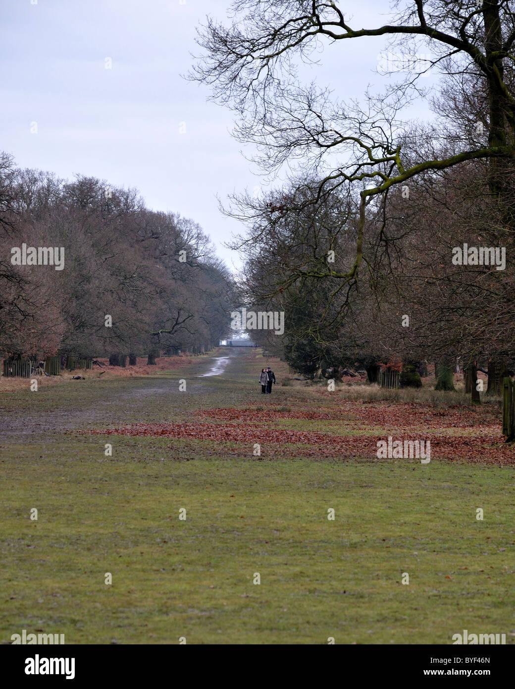 Dunham Massey National Trust romance - Stock Image