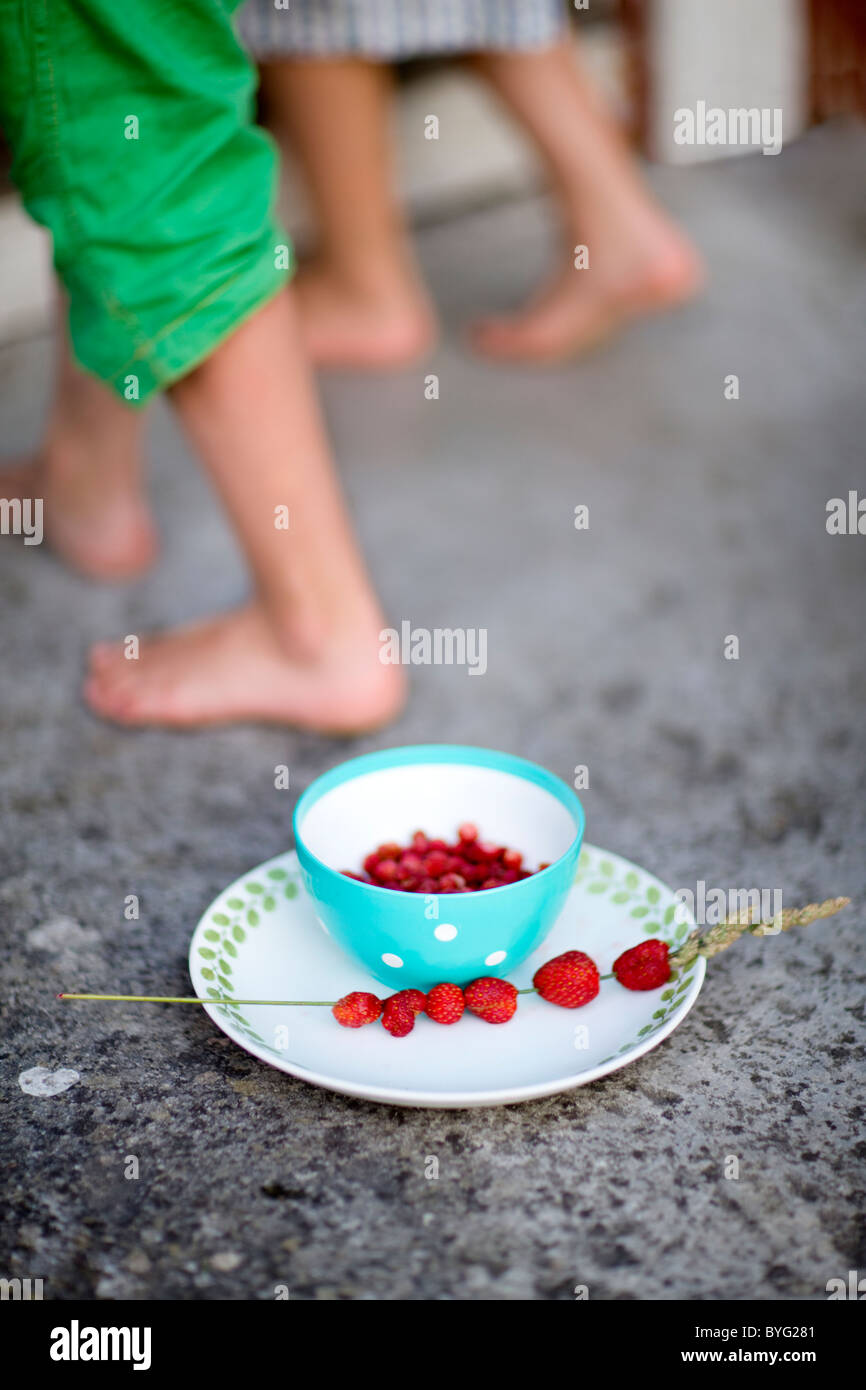 Bowl with wild strawberries, bare feet of children in background - Stock Image