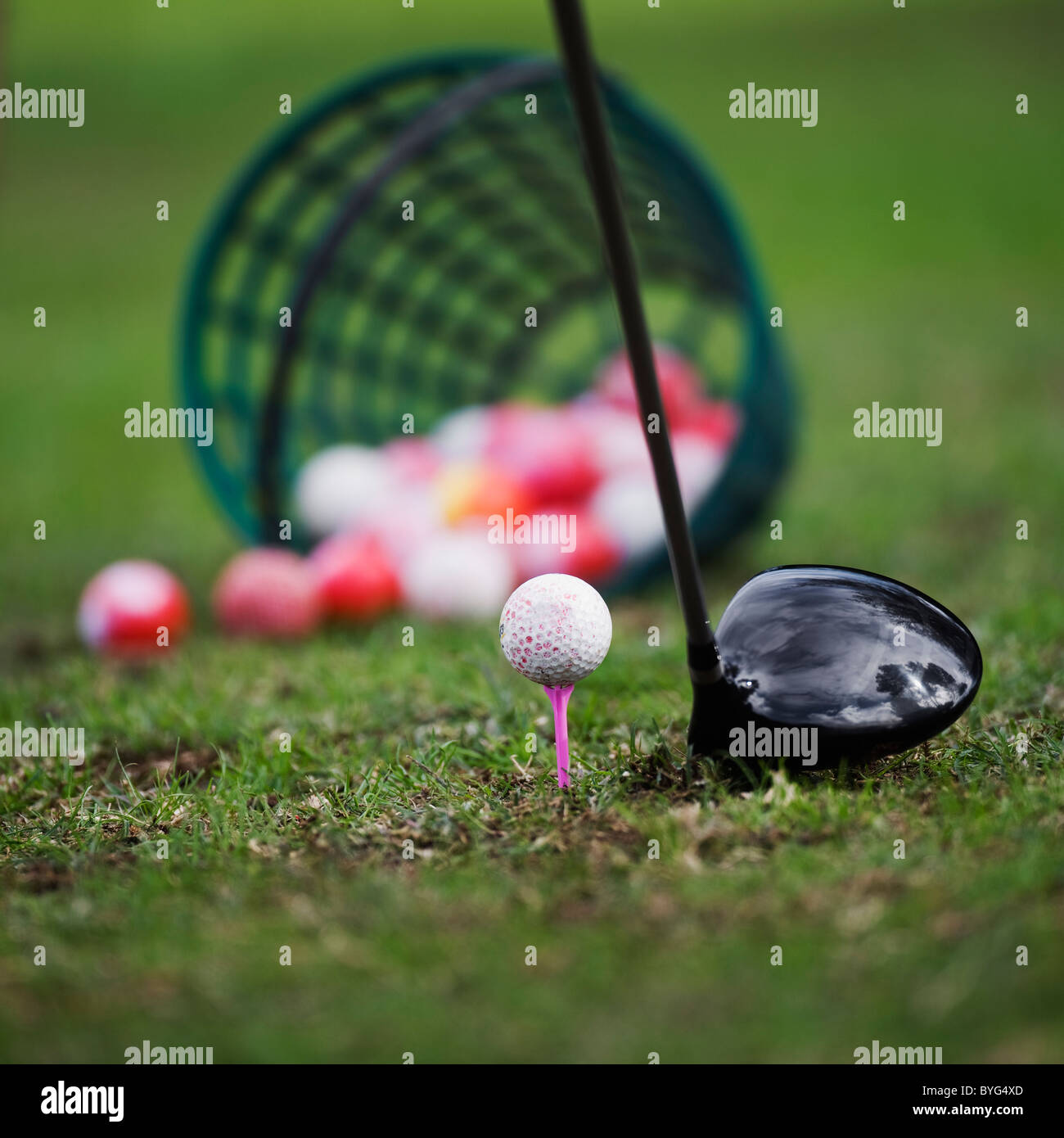 Golf ball on tee beside golf club - Stock Image