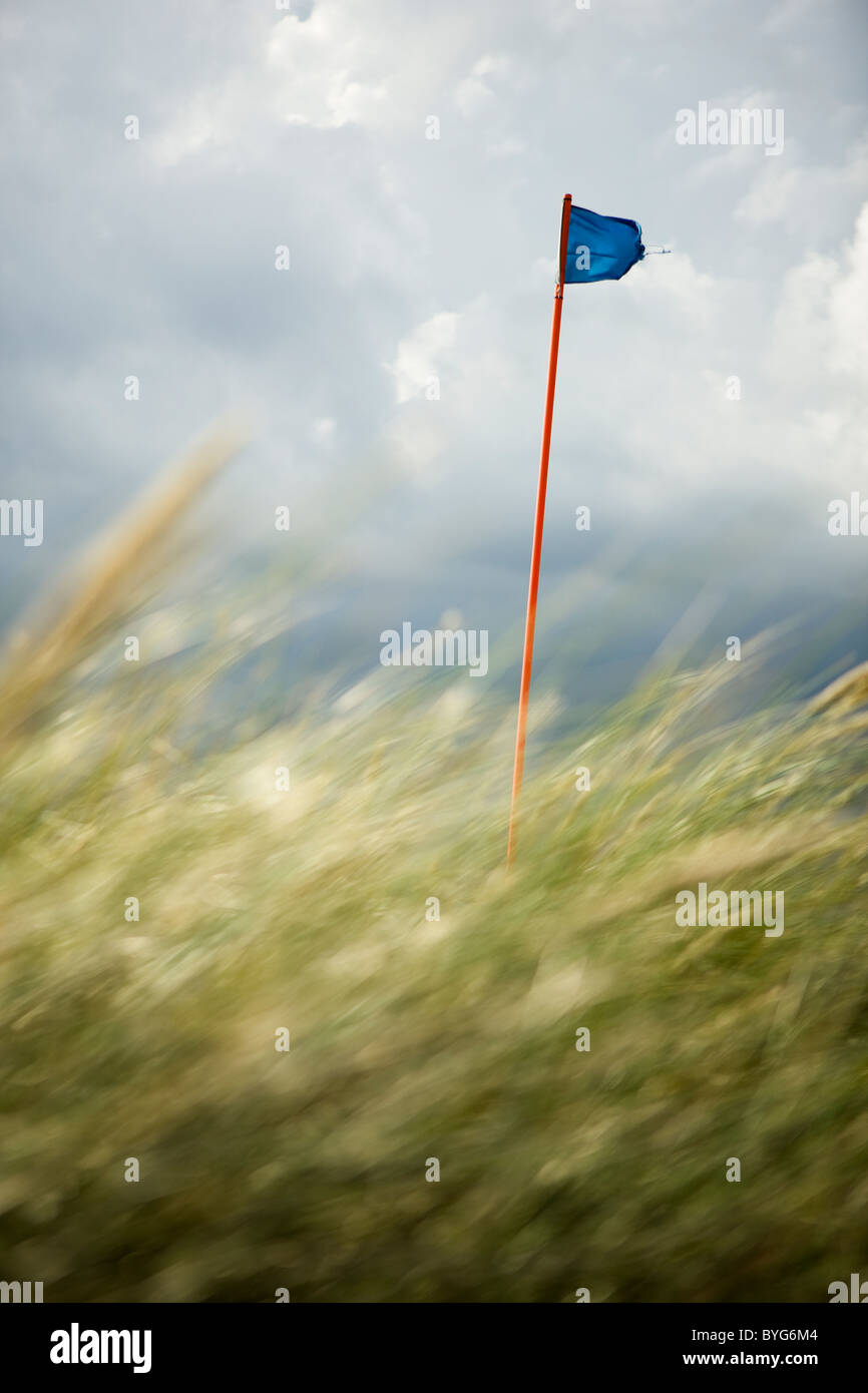 Golf course flag behind grass - Stock Image