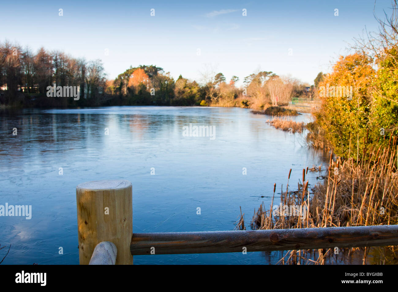 Frosty fencing with lake in background.Castle Espie, Co. Down, Northern Ireland. - Stock Image