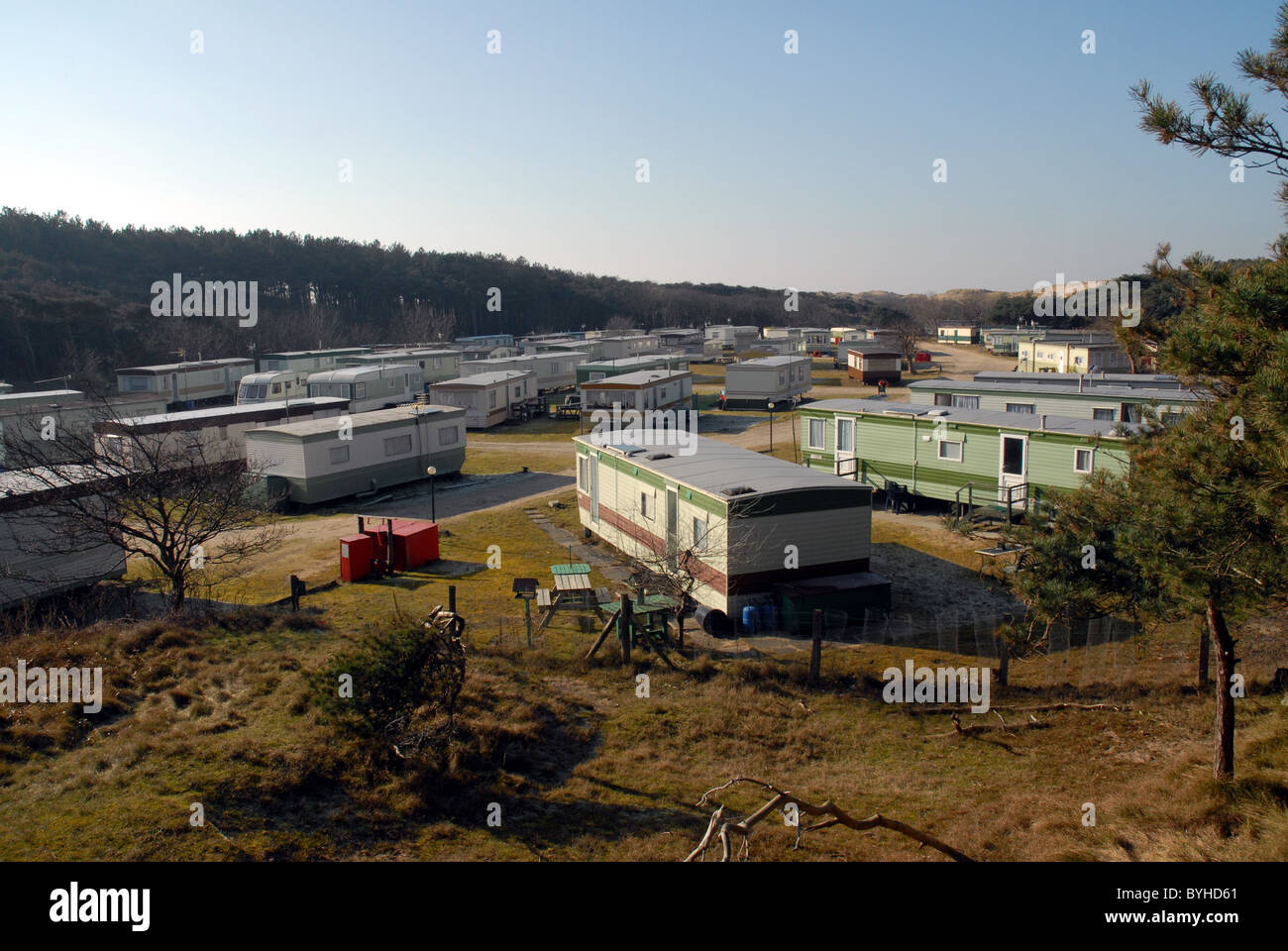 A trailer park in a pine forest near the sea at Formby, Merseyside, England, UK - Stock Image