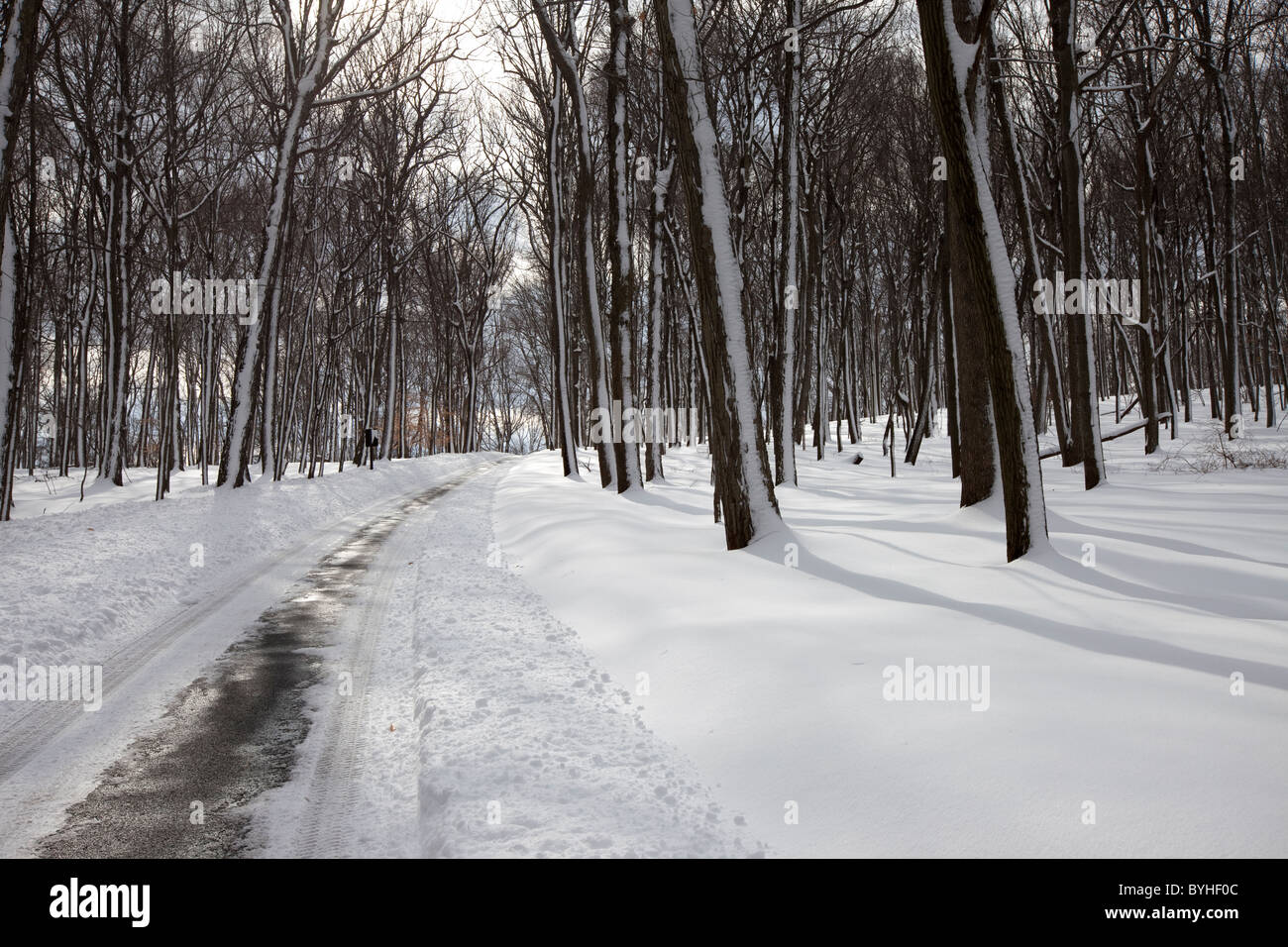 Winter Country Road, Scenic tour road that goes through Jockey Hollow, Morristown National Historical Park, New - Stock Image