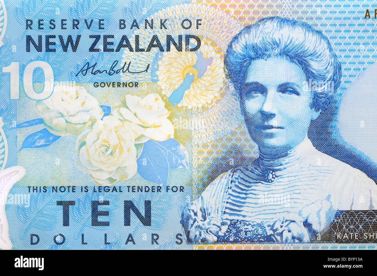 New Zealand Ten 10 Dollar Note. - Stock Image